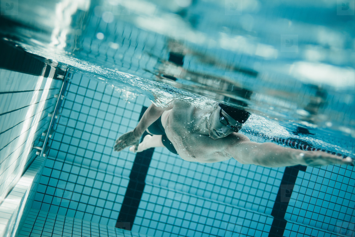 Professional male swimmer inside swimming pool