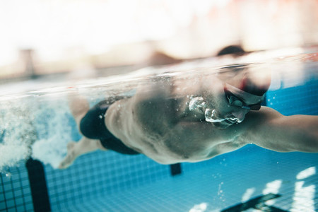 Male athlete swimming in pool