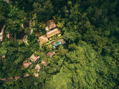 Luxury resort in forest surrounded by trees