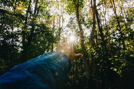 Sunlight through the hand