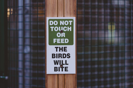 Dont039  Feed The Birds