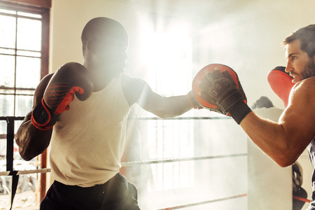 Light flare in gym with boxer training