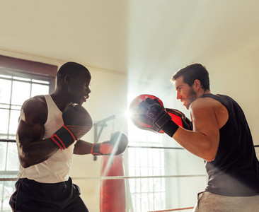 African male boxer training with partner in gym