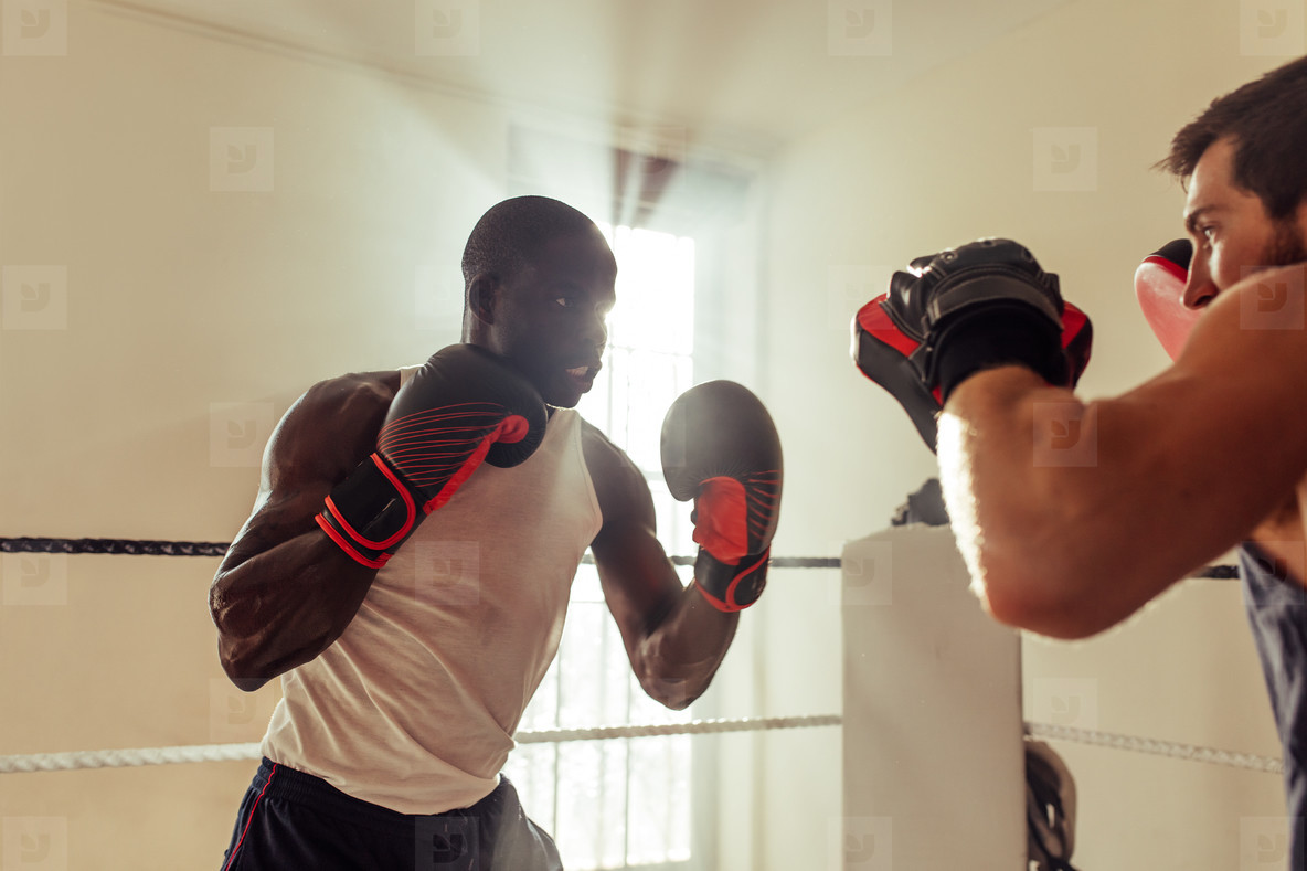 Fighter training with partner in boxing ring