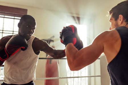 Man punching focus pad in boxing gym