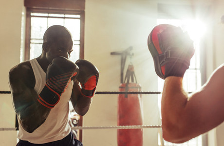 Concentrating boxer facing punching mitt
