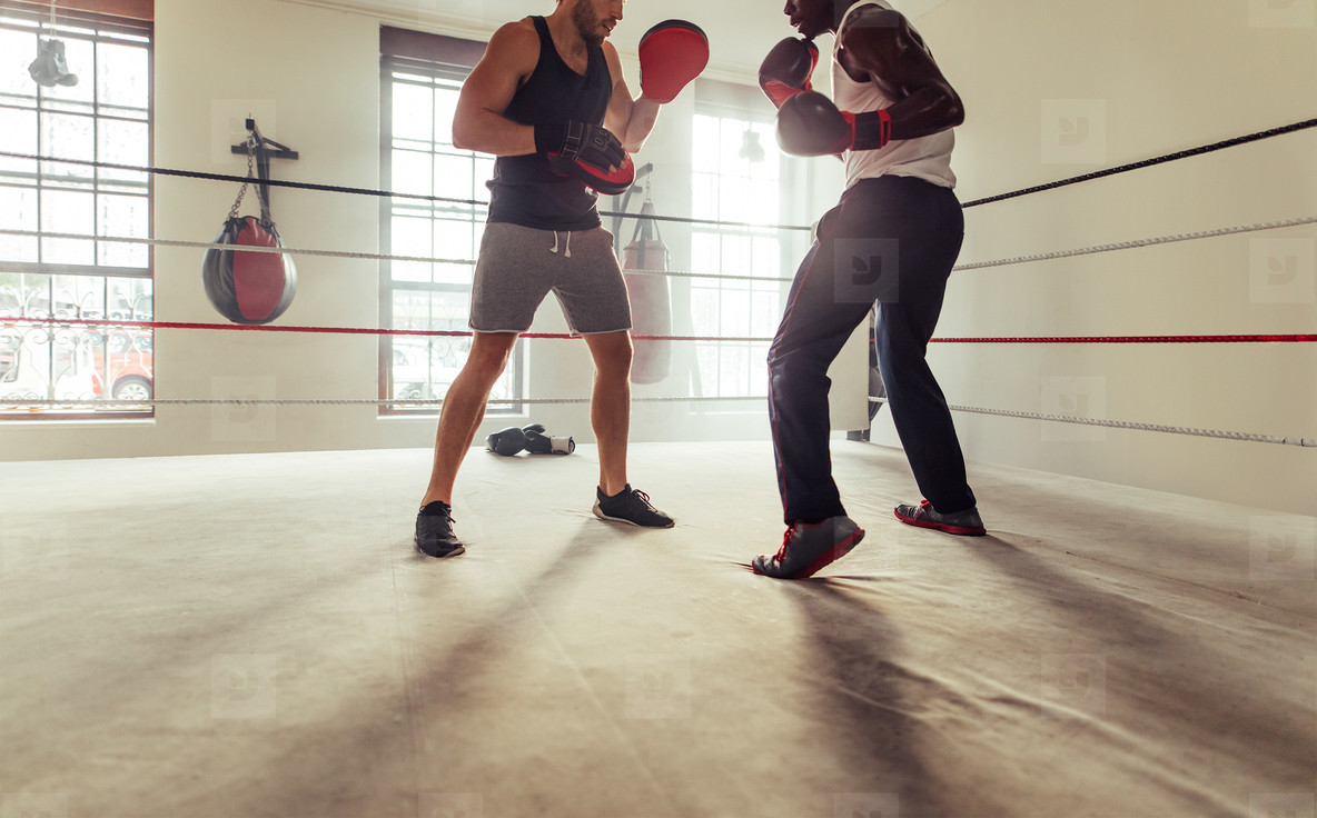 Copy space under boxing trainer and fighter