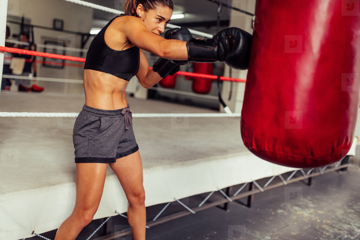 Muscular toned young female boxer working out