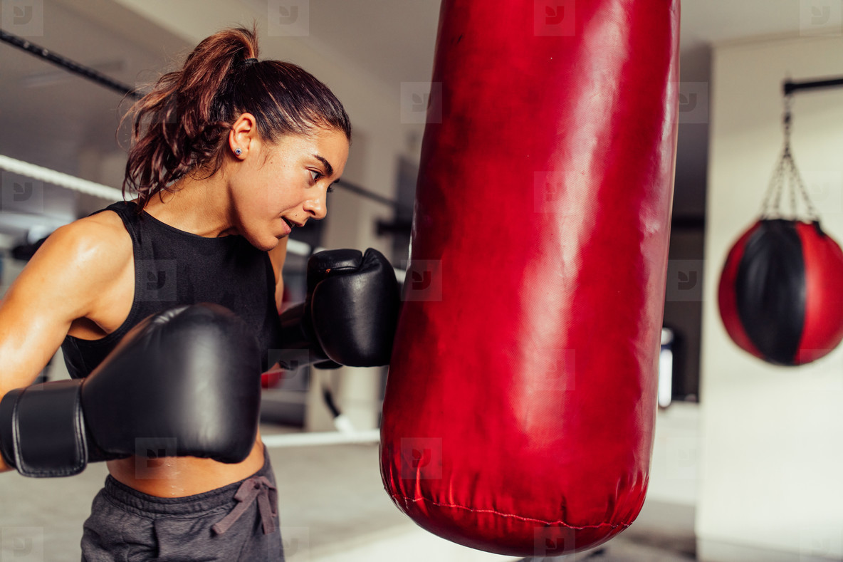 Determined young female boxer working out
