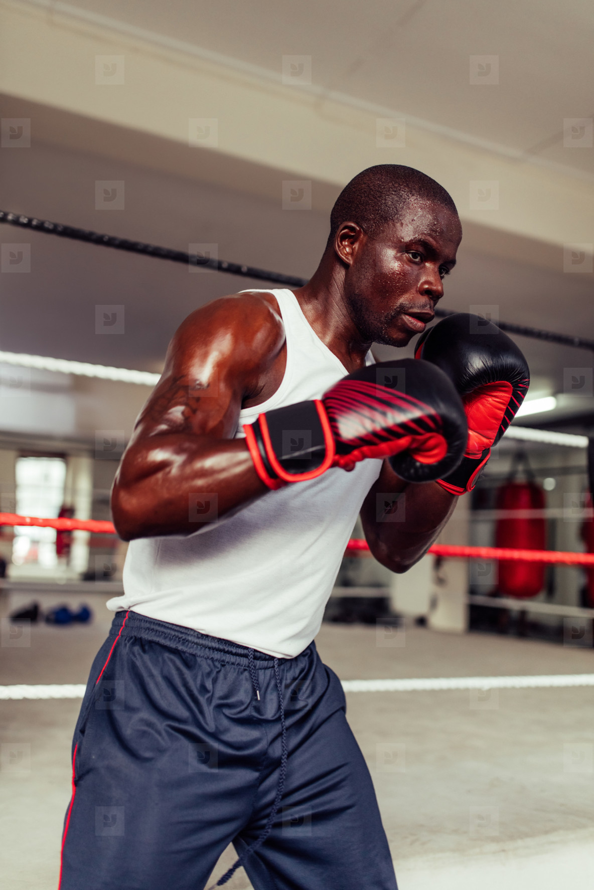 Handsome young boxer wearing gloves blue pants