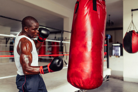 Muscular sweaty African boxer working out