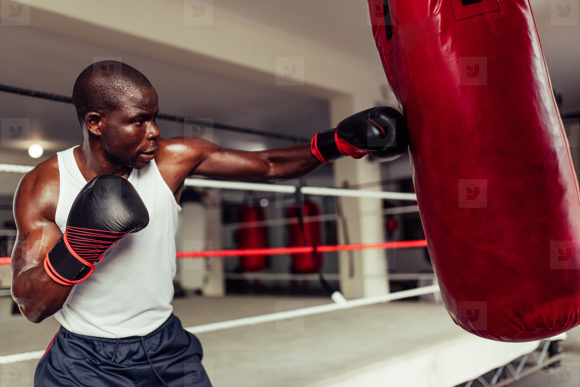 Fit muscular young African boxer