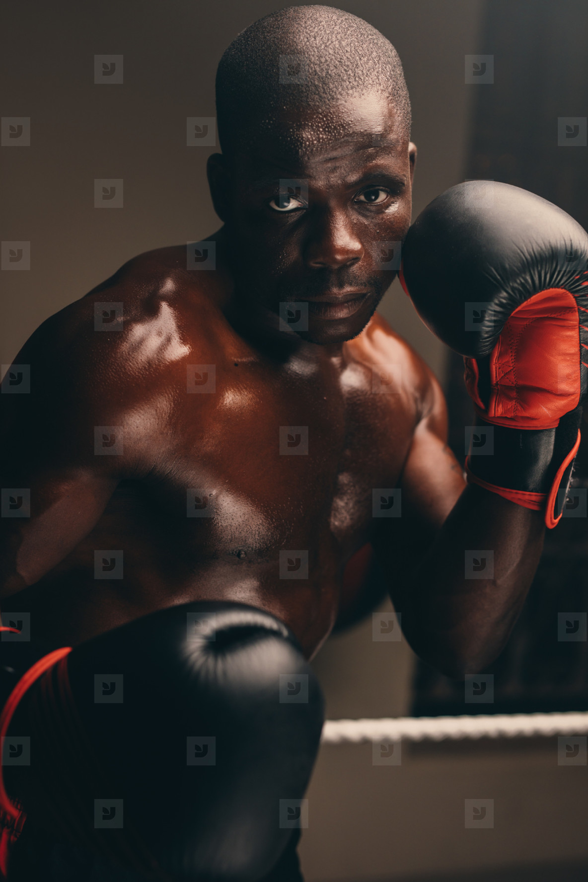 Tough young boxer with gloves up