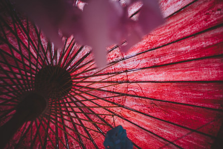 Asian Umbrellas 10