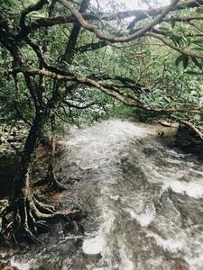 Waterfall  Nakhon Nayok