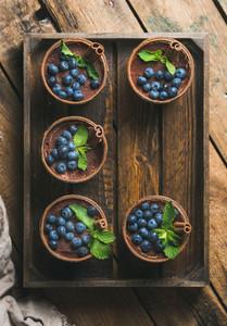 Homemade Tiramisu dessert with cinnamon mint leaves and fresh blueberries