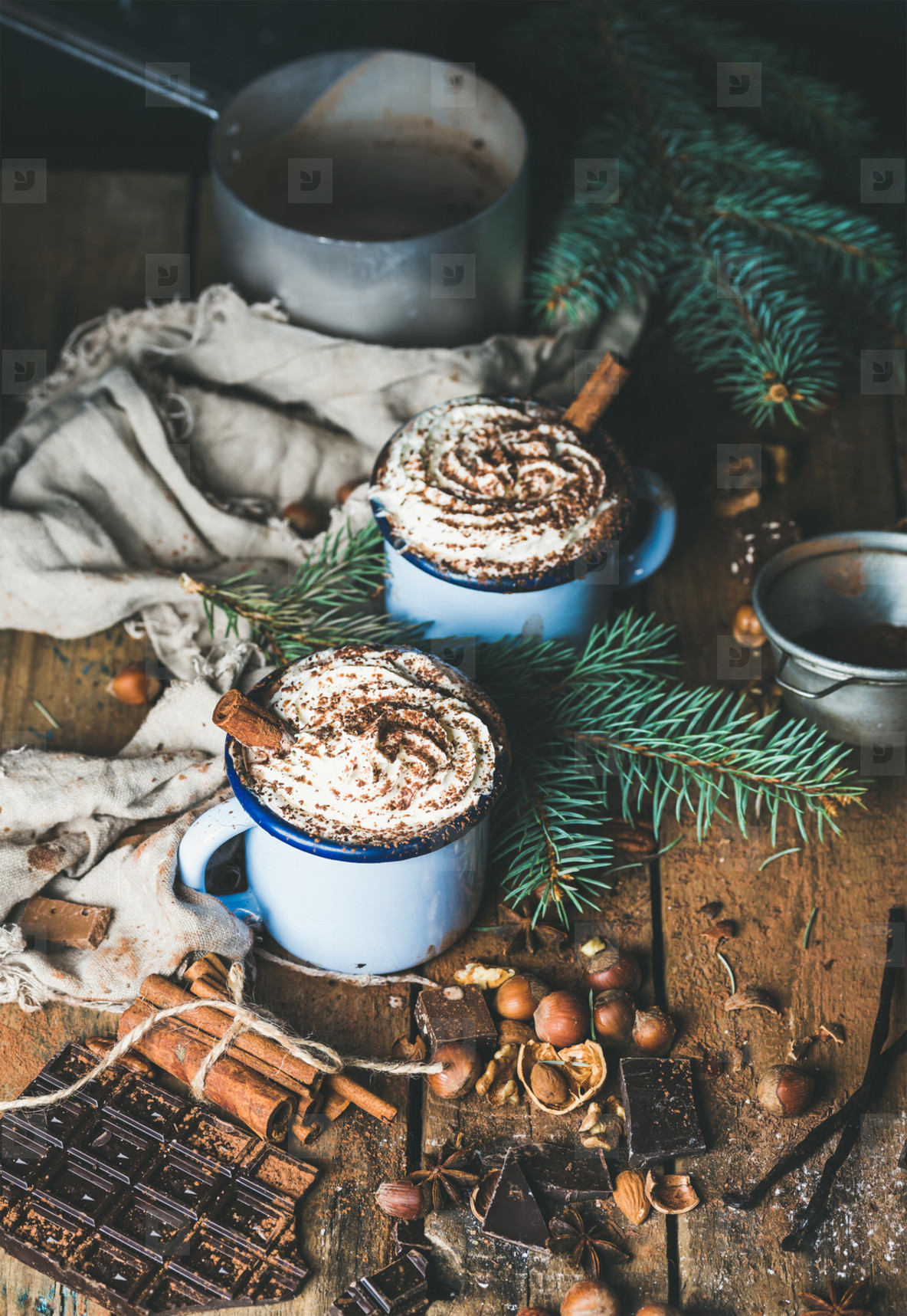 Hot chocolate with whipped cream  nuts  spices and fir tree branches
