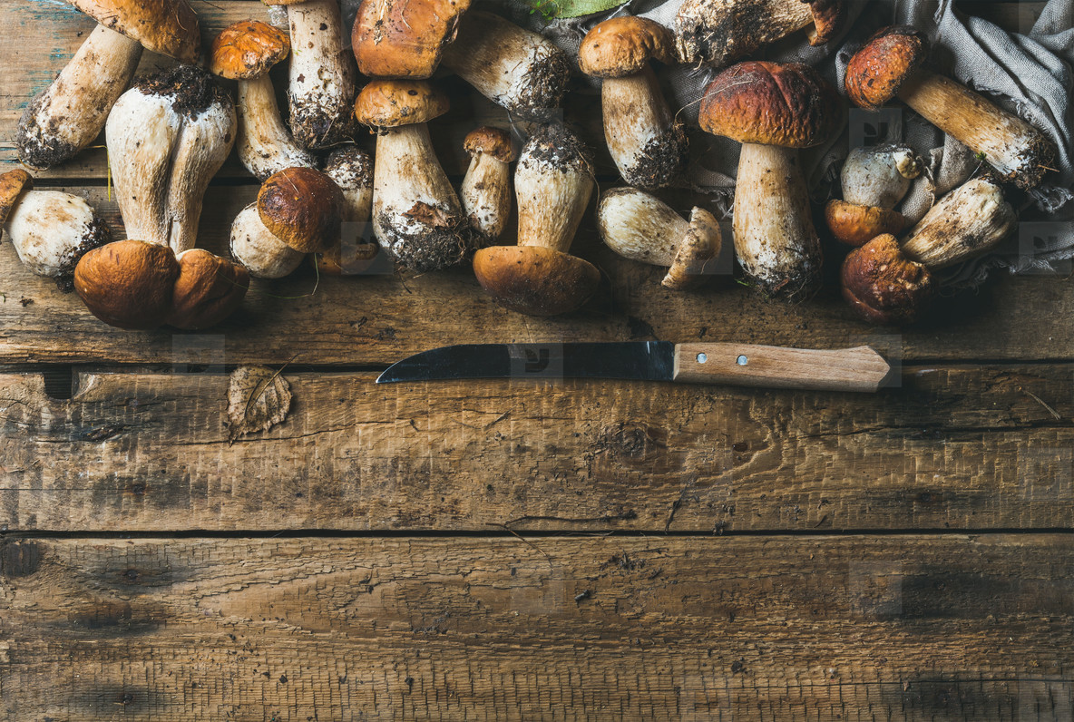 White forest mushrooms and knife on rustic wooden background