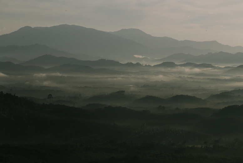 Morning mist mountain  05