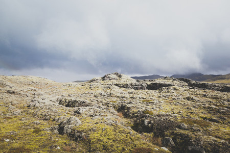 Icelandic 10