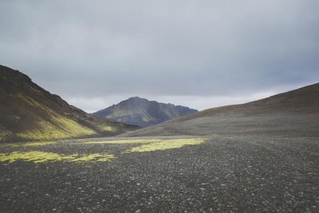 Icelandic 14