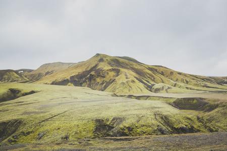 Icelandic 19