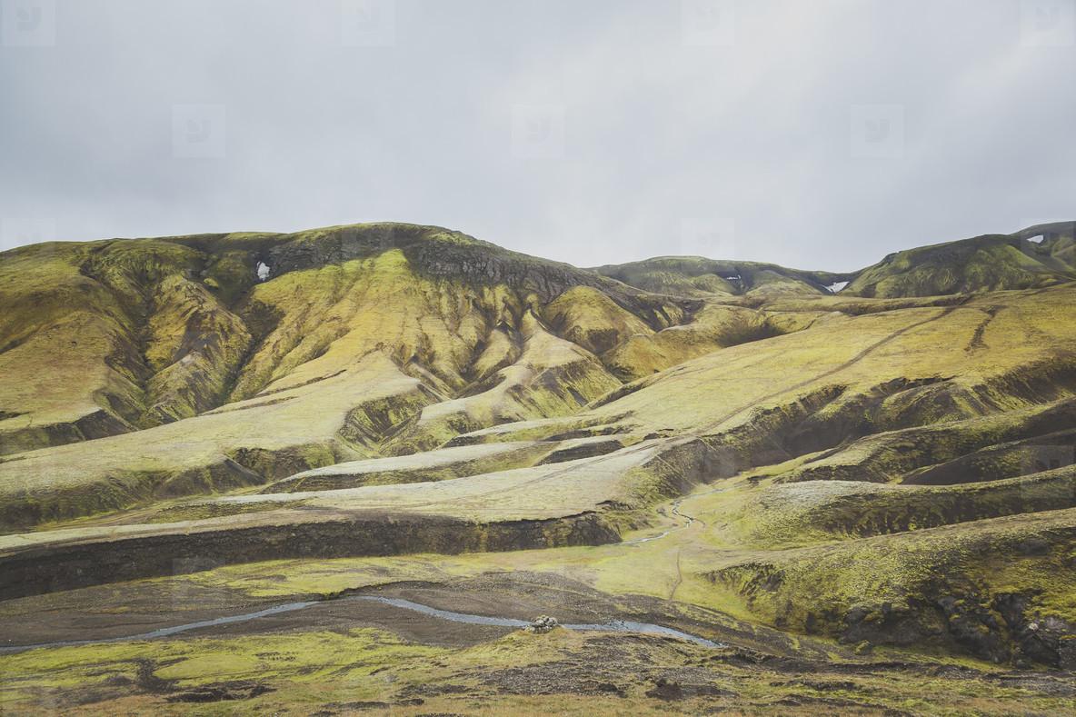 Icelandic  20