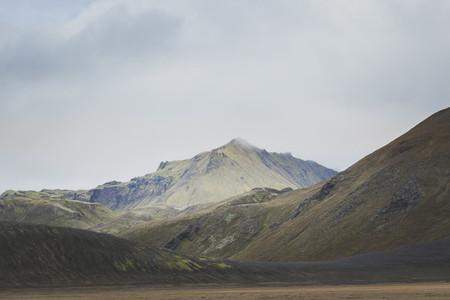 Icelandic 21