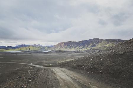 Icelandic 23