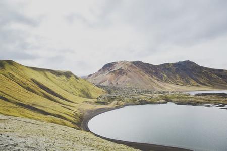 Icelandic 31