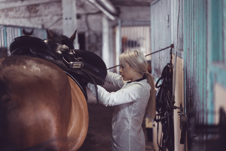 The girl takes care of the horse