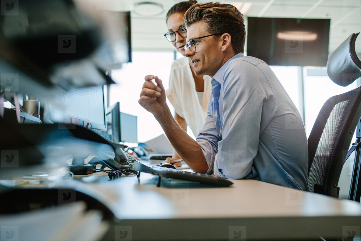 Business professionals looking at computer monitor