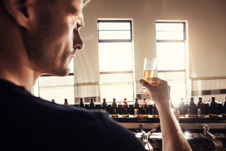 Male brewer testing craft beer at brewery factory
