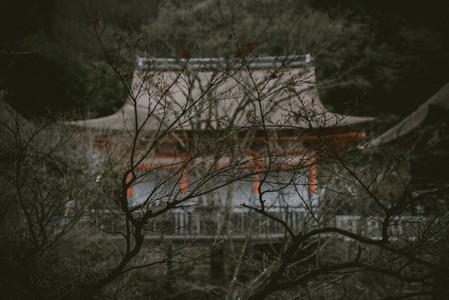 Japan CINE Street 18
