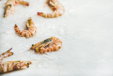 Raw tiger prawns on chipped ice  copy space