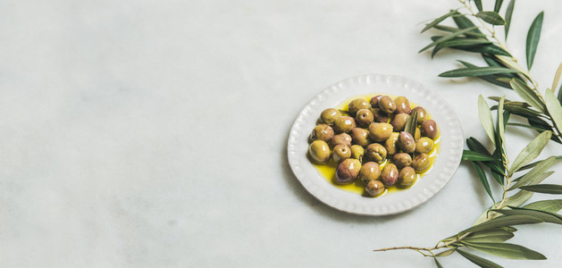 Pickled green Mediterranean olives and olive tree branch wide format