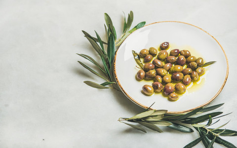 Pickled green Mediterranean olives in oil and olive tree branch