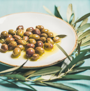 Pickled olives on plate and olive tree branch over blue background