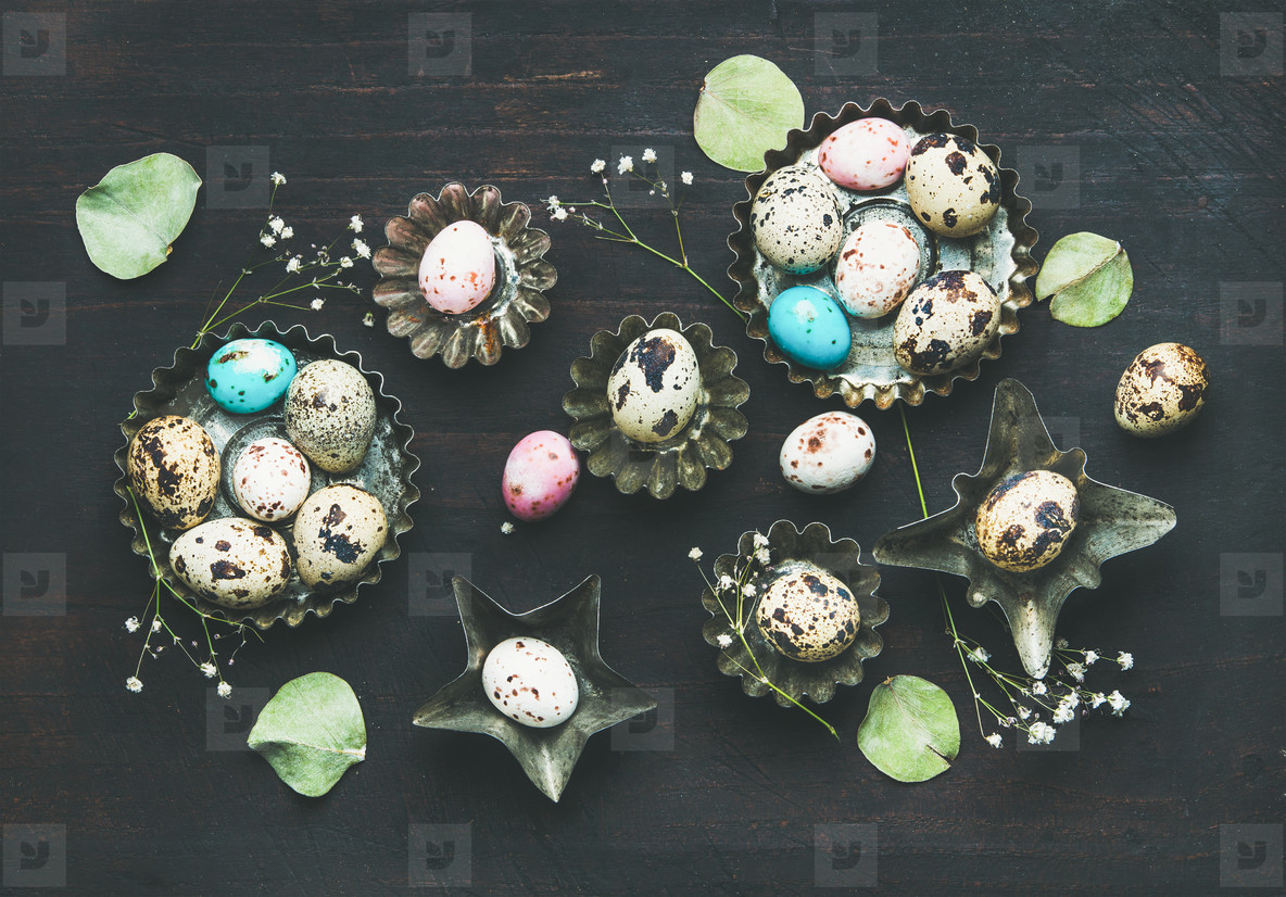 Colorful quail eggs  dried wild flowers and leaves  Easter holiday