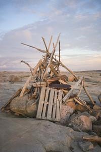 Driftwood 48