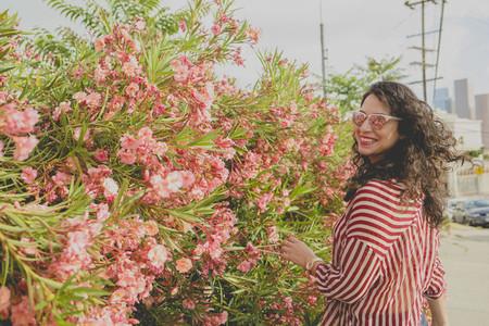 Hibiscus Dip 18