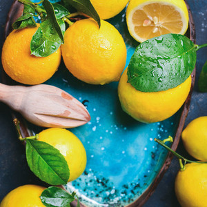 Freshly picked lemons with leaves in blue plate  copy space