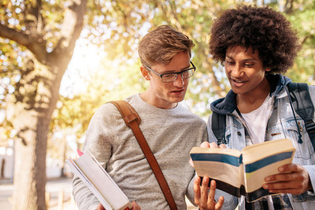 University male students with book on the road