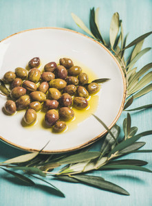 Pickled olives in oil and tree branch over blue background