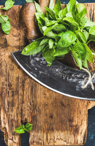 Fresh basil and vintage herb chopper on rustic wooden bord