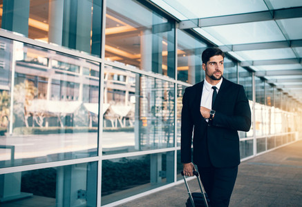 Business executive carrying suitcase in airport
