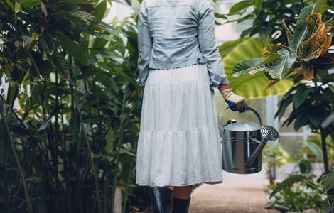 Female gardener watering plants in greenhouse