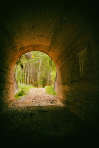 Tunnel to nature