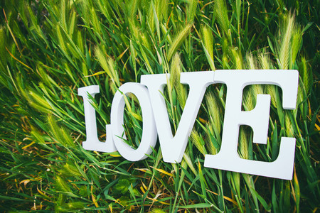 Love word over grass