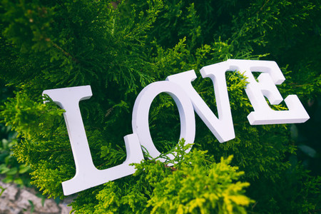 Love word and green background